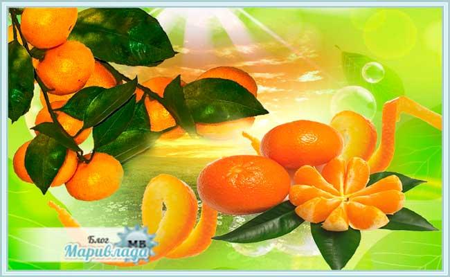 Способы применения мандариновых корок с максимальной пользой
