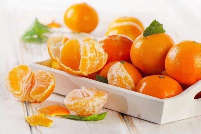 Разновидности мандаринов