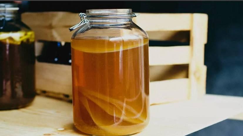 Чайный гриб уход за ним инструкция по применению, употреблению и размножению