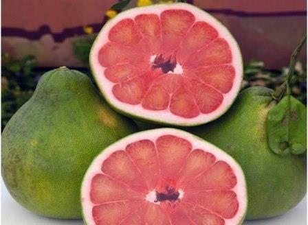 Помело сушеный: калорийность, польза и вред — selok.info