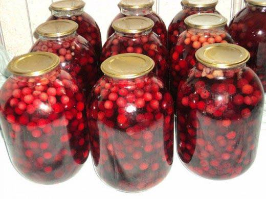 Компот из вишни и абрикосов на зиму - 5 пошаговых фото в рецепте