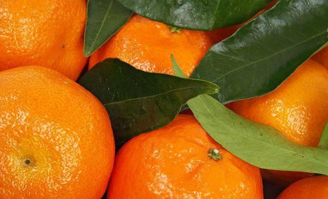 Мандарины — химический состав, пищевая ценность