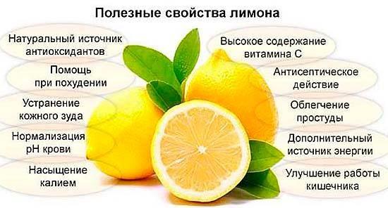 Цедра лимона — польза и вред для здоровья