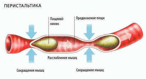 Кефир при гастрите: можно или нет? | компетентно о здоровье на ilive