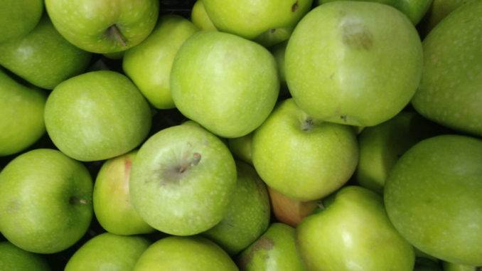 Красные, желтые, зеленые. какие яблоки полезнее - иа «север-пресс»