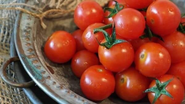 Помидор - это овощ, фрукт или ягода: были даже судебные процессы   накормишка   яндекс дзен