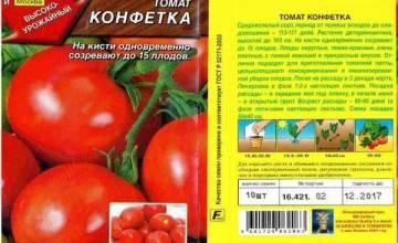 Описание сорта томата аделина и его характеристика