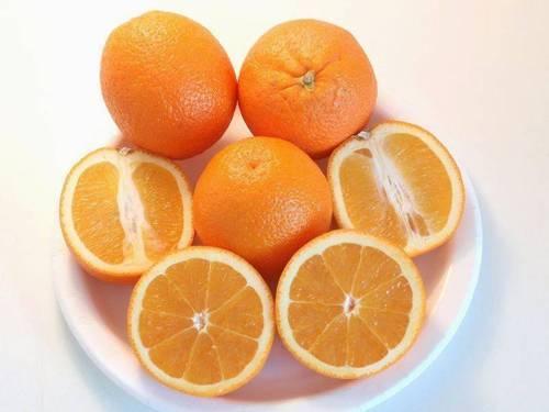 Комнатное растение апельсин: описание, уход и выращивание