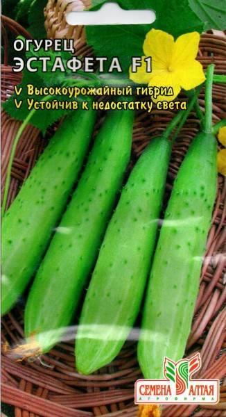 Огурец эстафета: описание сорта, отзывы, фото, выращивание, характеристика