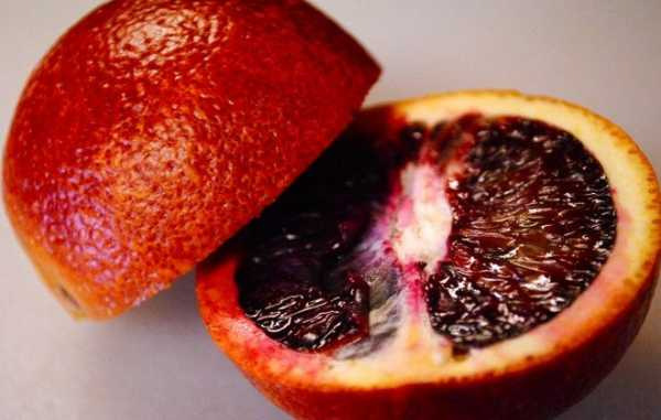 Красные сицилийские апельсины: особенности сортов, польза