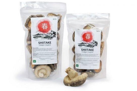 Шиитак - полезные и опасные свойства шиитака