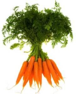 Привычная экзотика — что такое желтая морковь и каков ее химический состав?
