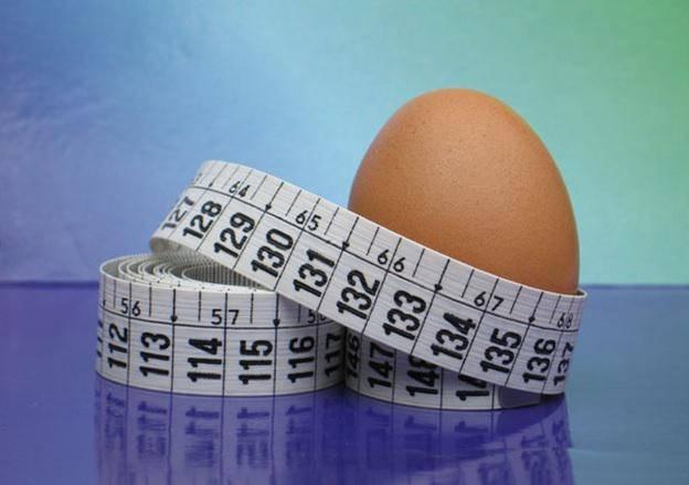 Апельсиновая диета для похудения: меню, польза и вред