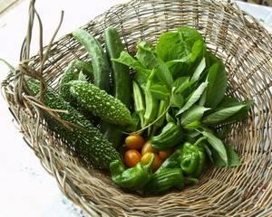 Момордика: лечебные свойства и применение   food and health
