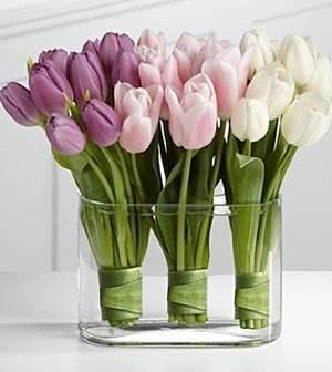 Как сохранить тюльпаны в домашних условиях (срезанные) чтобы не распустились
