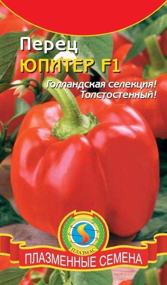 Перец юпитер характеристики и описание сорта урожайность отзывы фото - агро журнал pole39.ru
