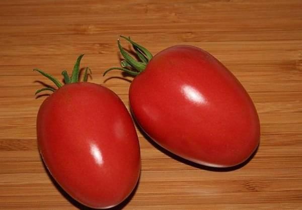 Как ухаживать за томатом «спрут сливка» в открытом грунте и теплице