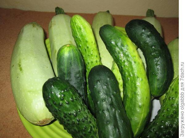 Как определить нитраты в овощах и фруктах, и как избавиться от нитратов в продуктах?