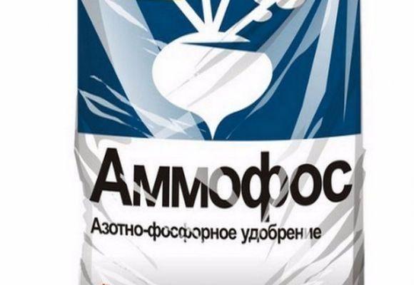 Удобрение аммофос: характеристика и особенности применения, отзывы
