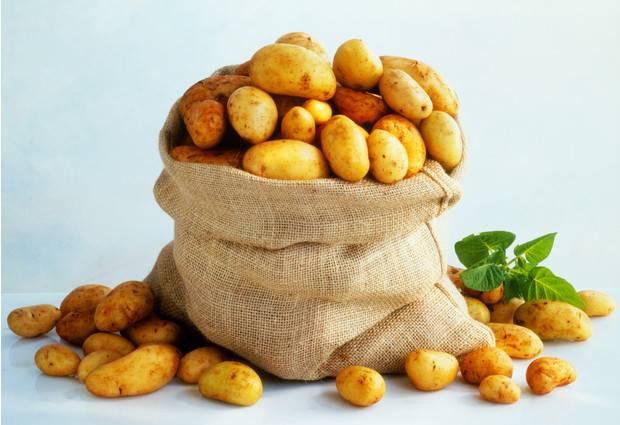 Картофель в мундире: польза и вред для здоровья, какой способ приготовления лучше, какие витамины содержатся в очищенной и с кожурой, свойства и характеристика