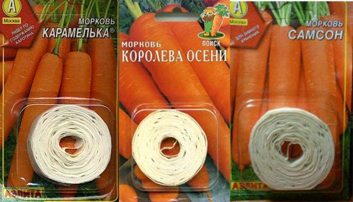 Подготовка семян моркови к посеву: как подготовить и обработать