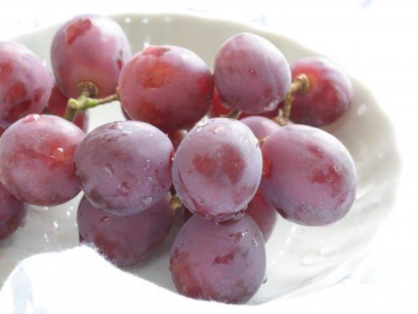 Какие существуют сорта винограда без косточек