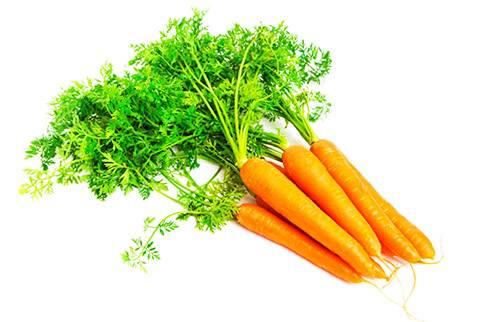 Морковный сок — польза и вред, как правильно пить?