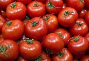 Проверенный временем томат никола: подробное описание, секреты выращивания, отзывы