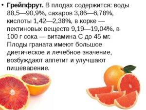 Польза грейпфрута для организма. совместимость грейпфрута