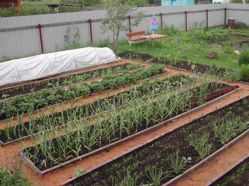 Предпосадочное мульчирование и перекопка почвы на даче весной