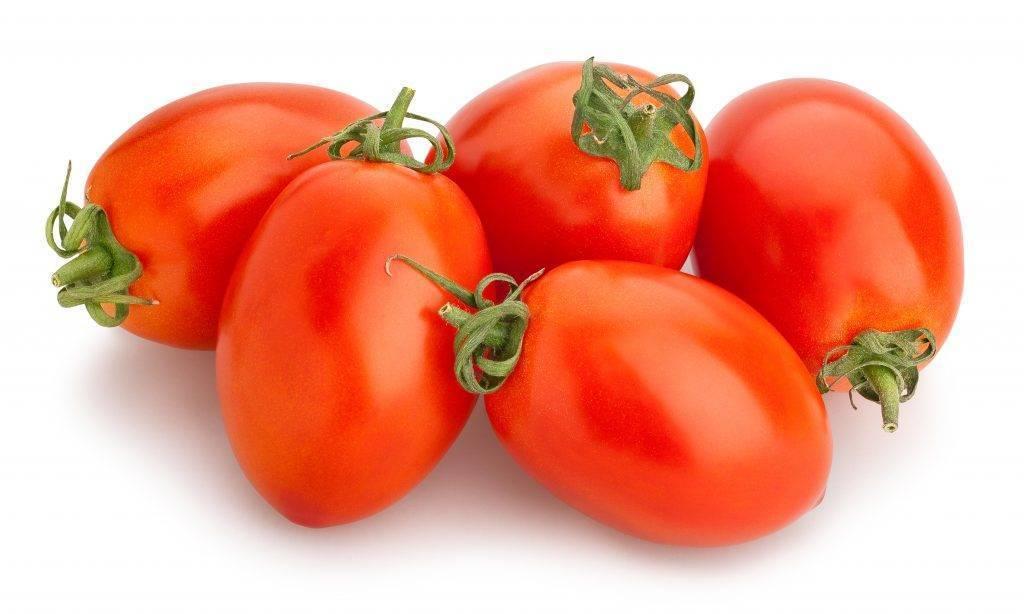 Томат мариша: характеристика и описание сорта, урожайность с фото