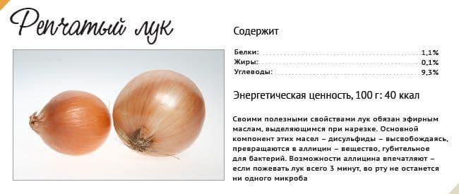 Лук центурион: описание сорта, особенности выращивания и отзывы