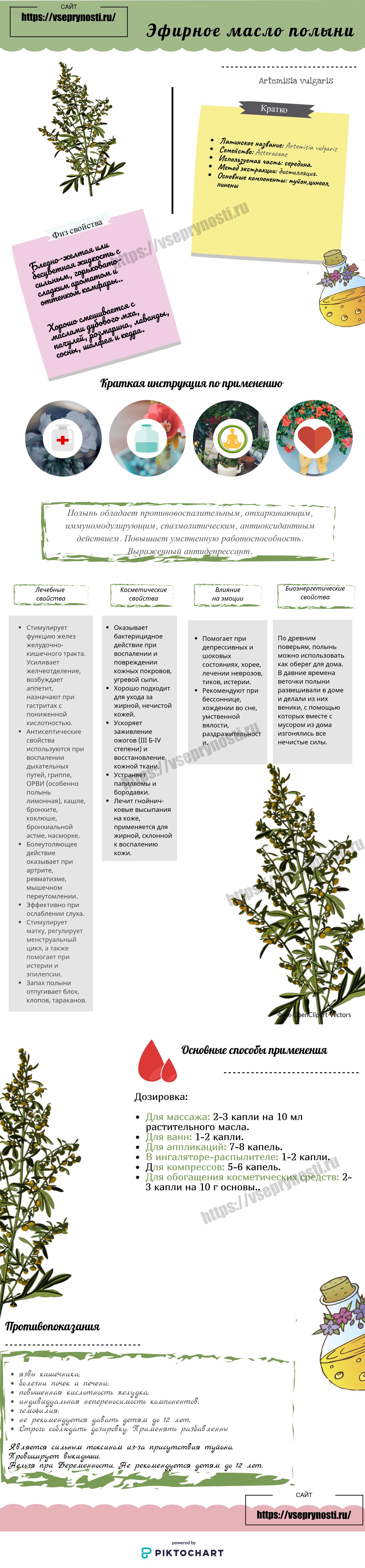 Полынь: польза и вред растения для человека   food and health