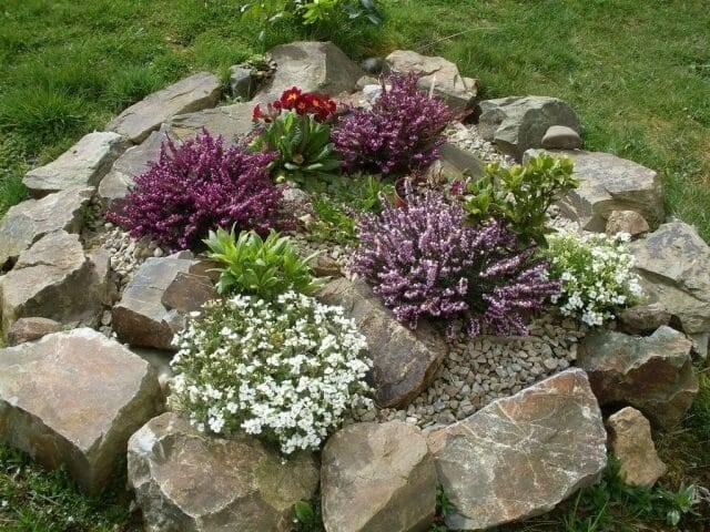 Растения для альпийской горки: выбираем цветы и правильно размещаем