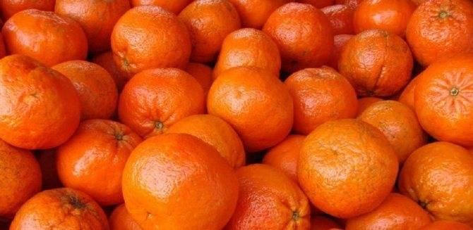 К чему снятся мандарины, толкование сна по соннику