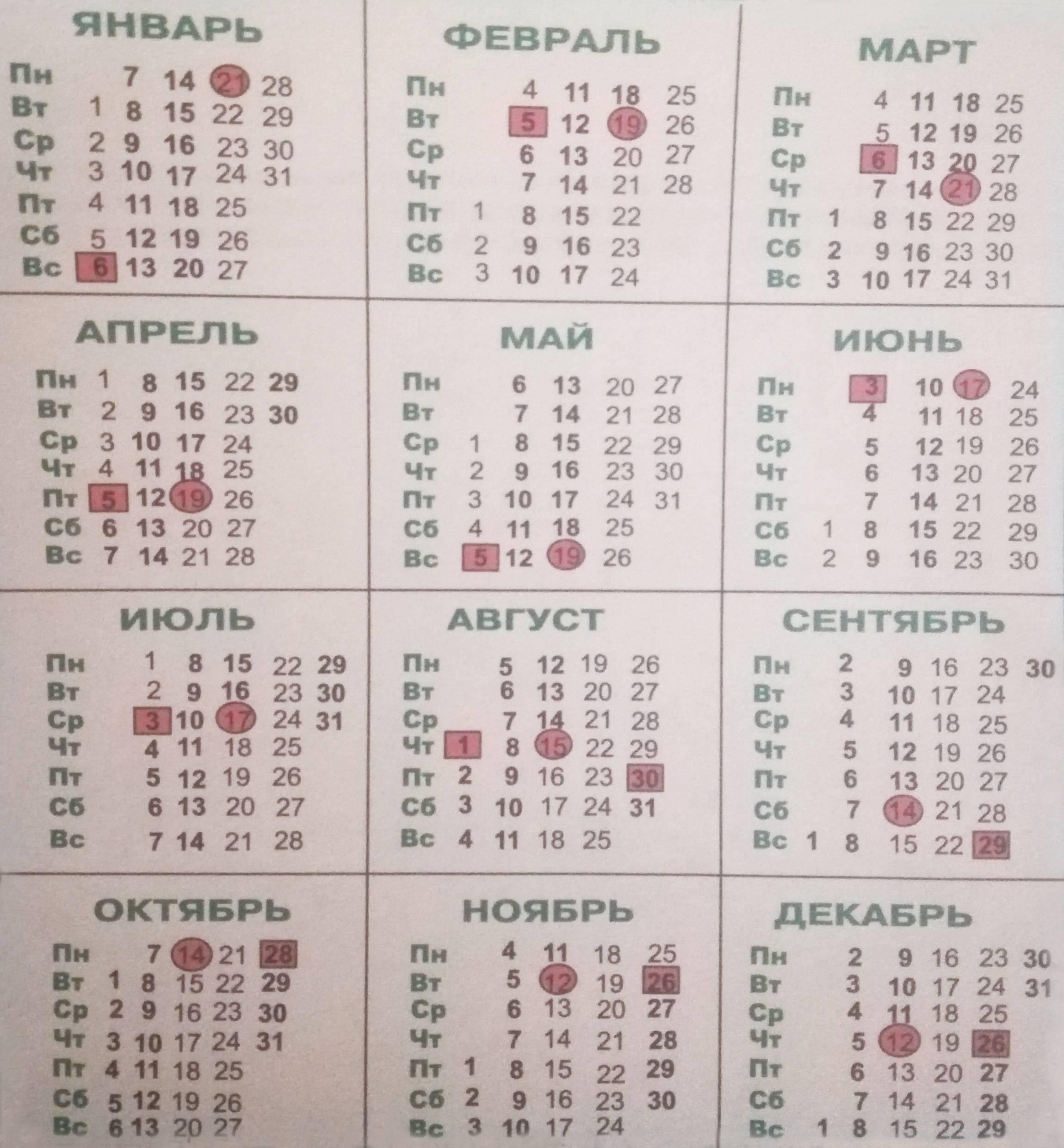 Посадка кабачков по лунному календарю