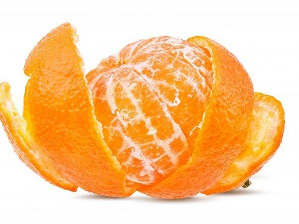 Апельсин при беременности — польза, противопоказания и риски употребления