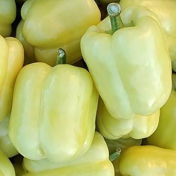 Перец биг герл: отзывы, отличия от сладкого сорта биг бой, особенности выращивания, преимущества и недостатки