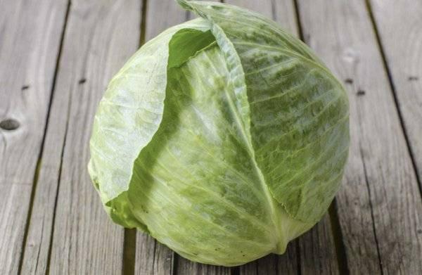 Полезные свойства и вред квашеной капусты