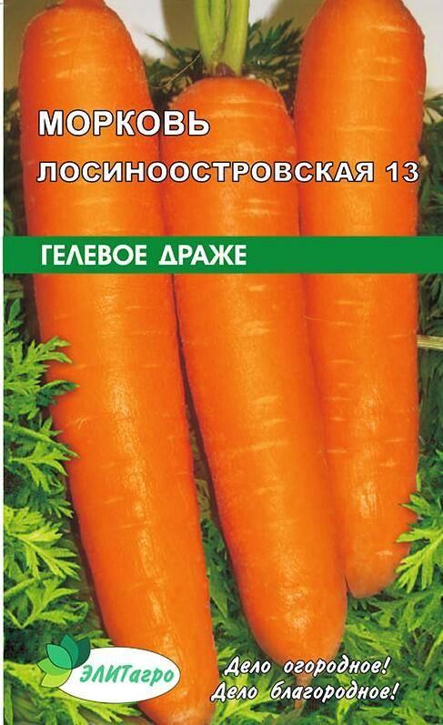 Морковь лосиноостровская 13: что это за сорт, подробное описание и характеристики