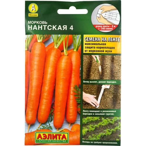 Морковь «нантская» – характеристика сорта, выращивание и уход
