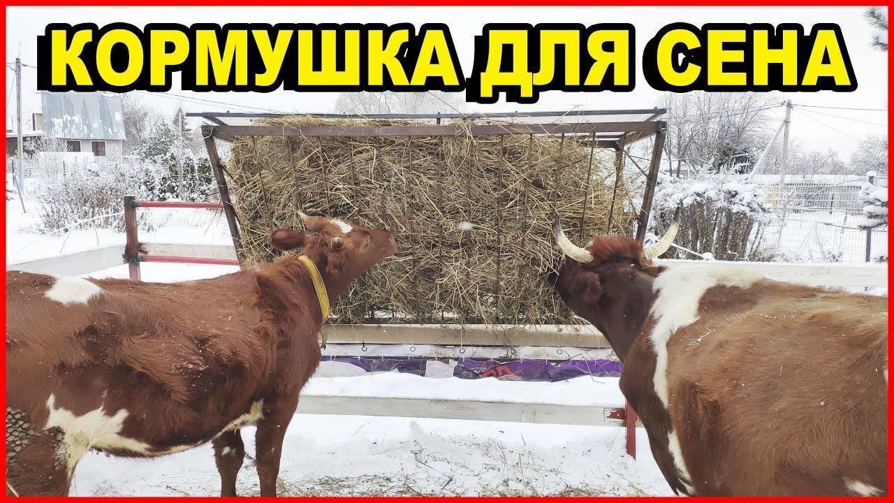 Как сделать поилки для коров своими руками - агрономwiki