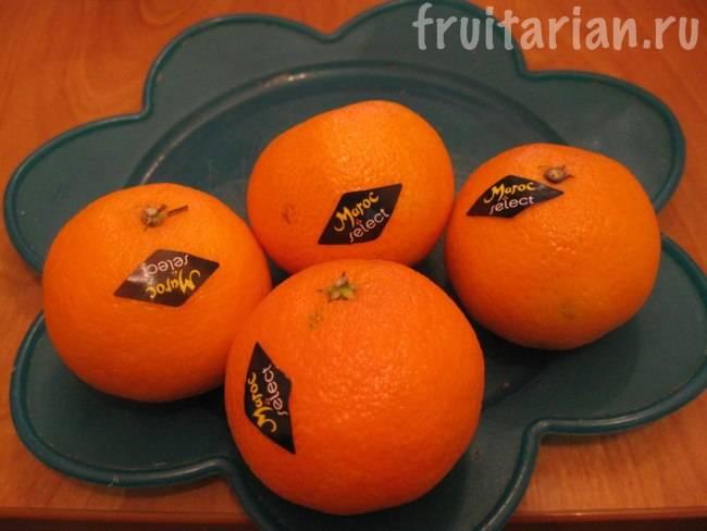 Марокканские мандарины: вкус, польза, как выбрать