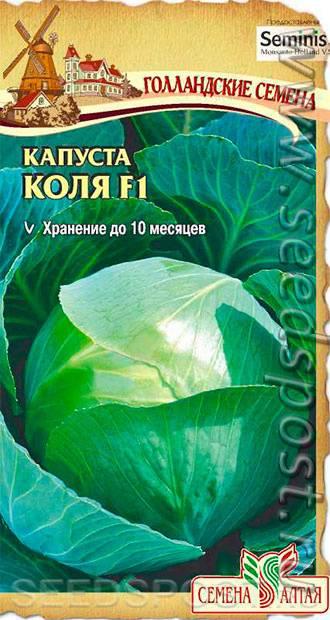 Капуста коля f1: описание сорта, отзывы, фото, посадка и уход, выращивание, урожайность