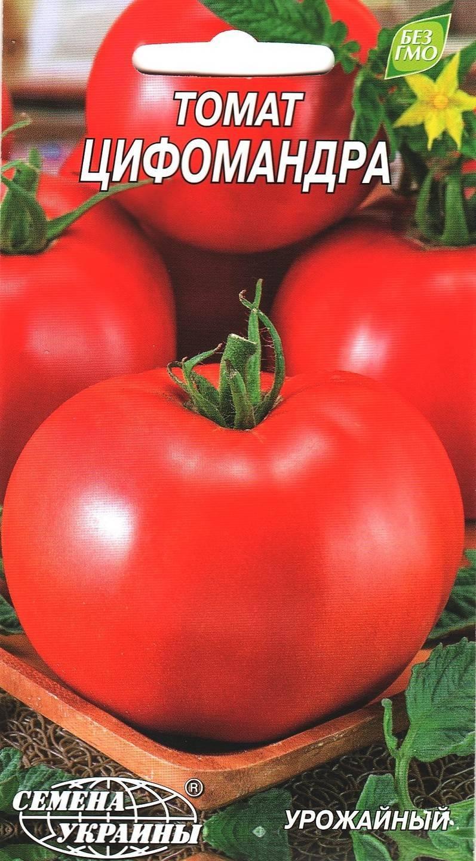 Томат цифомандра — описание сорта, отзывы, урожайность