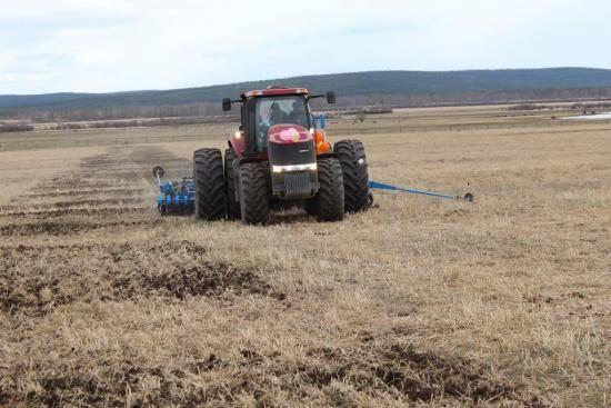 Боронование почвы, уход за посевами озимой пшеницы — пропозиция
