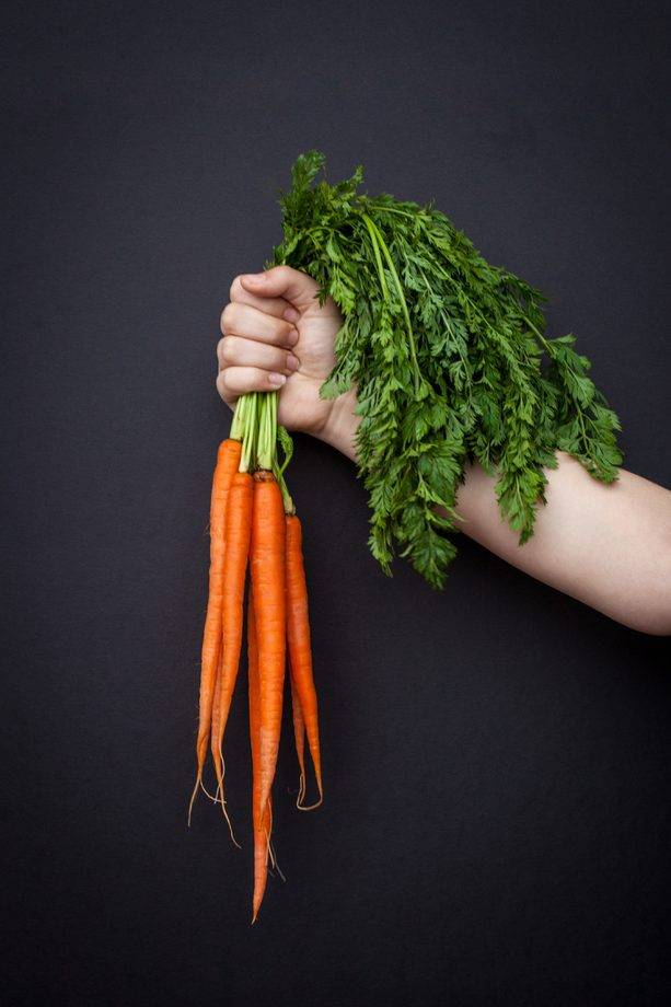 Морковь желтого цвета вред и польза - фермеру