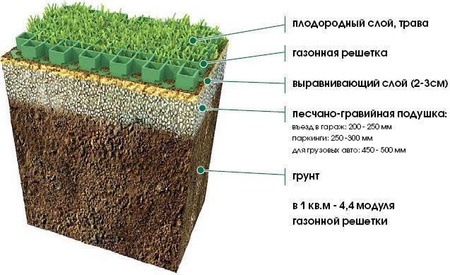 Посадка газонной травы весной - когда и как сеять семена для зеленого ковра
