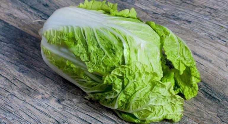Пекинская капуста билко f1: чем уникален данный гибридный сорт, каковы условия выращивания, а также советы для огородников и интересные рецепты русский фермер