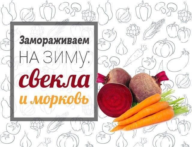 Как просто заморозить морковь на зиму в домашних условиях, топ 10 рецептов и хранение